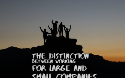 The Distinction between Working for Large and Small Companies