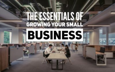 The Essentials of Growing your Small Business